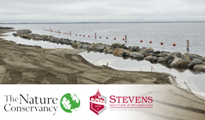 Are living shoreline projects less expensive than bulkheads?